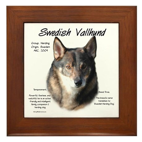 Swedish Vallhund Framed Tile