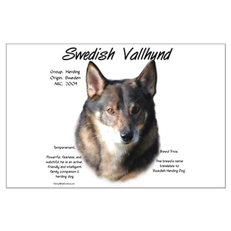 Swedish Vallhund Large Poster