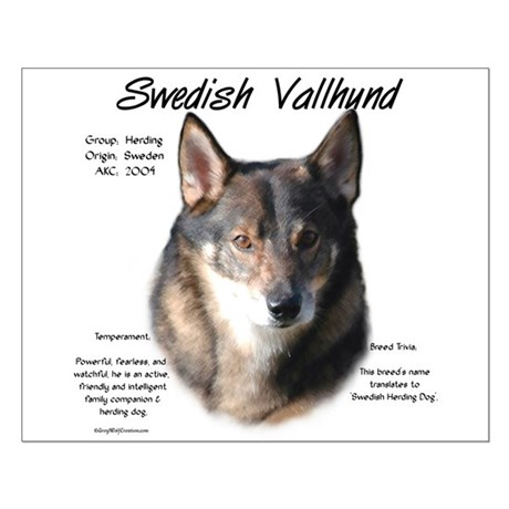 Swedish Vallhund Small Poster