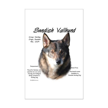 Swedish Vallhund Mini Poster Print