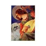 Angel3/Shih Tzu (P) Rectangle Magnet