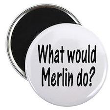 """Merlin 2.25"""" Magnet (100 pack)"""