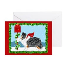 TriColor Sheltie Mail Greeting Card