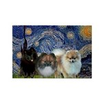 Starry/3 Pomeranians Rectangle Magnet