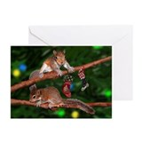 Squirrel Tree Lights Greeting Cards (Pk of 10)