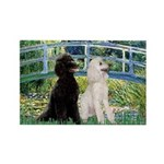 Bridge / Std Poodle (pr) Rectangle Magnet (10 pack