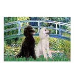 Bridge / Std Poodle (pr) Postcards (Package of 8)