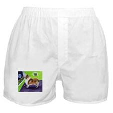COLLIE smiling moon Design Boxer Shorts