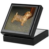 Whimsical Norfolk Terrier Puppy Keepsake Box