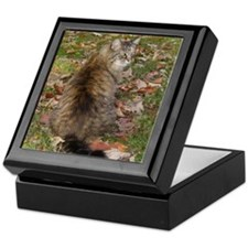 Maine Coon cat Fall leaves Keepsake Box