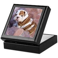 Penny's Paw Keepsake Box