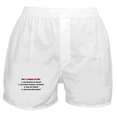 Santa Stages Boxer Shorts
