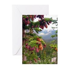 Pine Cones: Truchas Peaks Greeting Cards (Pk of 10