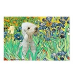 Irises /Bedlington T Postcards (Package of 8)