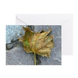 Last Leaf Of Autumn Greeting Cards (Pk of 20)