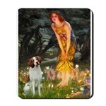 Fairies / Brittany S Mousepad