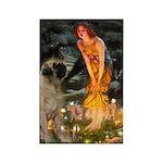 Fairies / Bullmastiff Rectangle Magnet (10 pack)