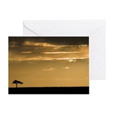 ACACIA TREE IN THE MARA Greeting Card