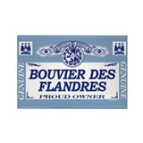 BOUVIER DES FLANDRES Rectangle Magnet (100 pack)