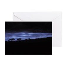 DEEP BLUE SUNSET IN THE MARA Greeting Cards (Pk of