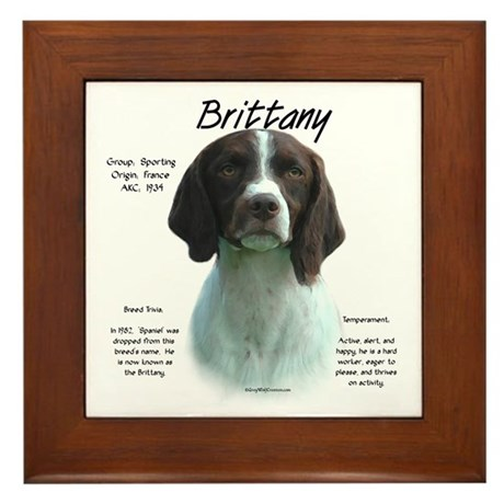 Brittany (Liver) Framed Tile