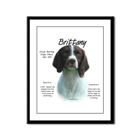 Brittany (Liver) Framed Panel Print