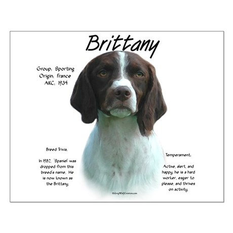 Brittany (Liver) Small Poster