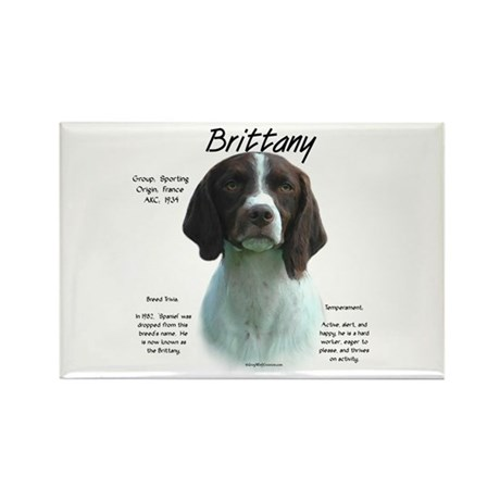 Brittany (Liver) Rectangle Magnet (10 pack)