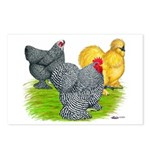 Feather-legged Bantams Postcards (Package of 8)