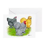 Feather-legged Bantams Greeting Cards (Pk of 20)