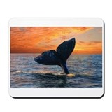DREAM SUNSET WHALE Mousepad