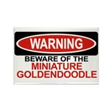 MINIATURE GOLDENDOODLE Rectangle Magnet (10 pack)