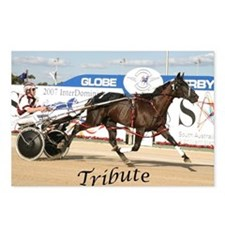 Cool Harness racing Postcards (Package of 8)
