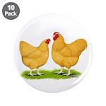 Buff Wyandotte Chickens 3.5