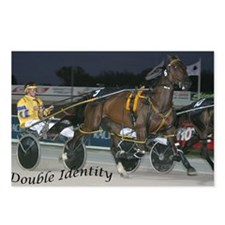 Unique Harness racing Postcards (Package of 8)