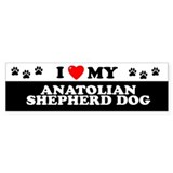 ANATOLIAN SHEPHERD DOG Bumper Bumper Sticker