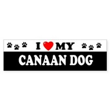 CANAAN DOG Bumper Bumper Sticker