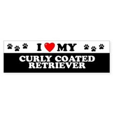 CURLY COATED RETRIEVER Bumper Car Sticker