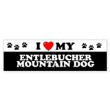 ENTLEBUCHER MOUNTAIN DOG Bumper Car Sticker