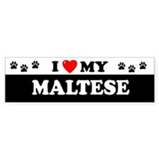 MALTESE Bumper Bumper Sticker