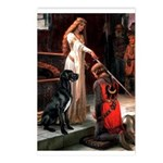 Accolade / Gr Dane (bl) Postcards (Package of 8)