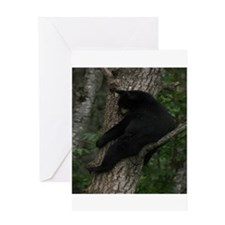 black bear in tree Greeting Card