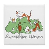 Sweetwater Tile Coaster