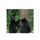 black bears Postcards (Package of 8)