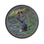 Black Tailed Jackrabbit Wall Clock