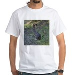 Black Tailed Jackrabbit White T-Shirt