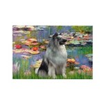 Lilies / Keeshond Rectangle Magnet (10 pack)