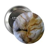 "Snuggle Kittens 2.25"" Button (10 pack)"