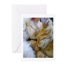 Snuggle Kittens Greeting Cards (Pk of 20)