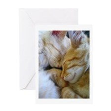 Snuggle Kittens Greeting Card